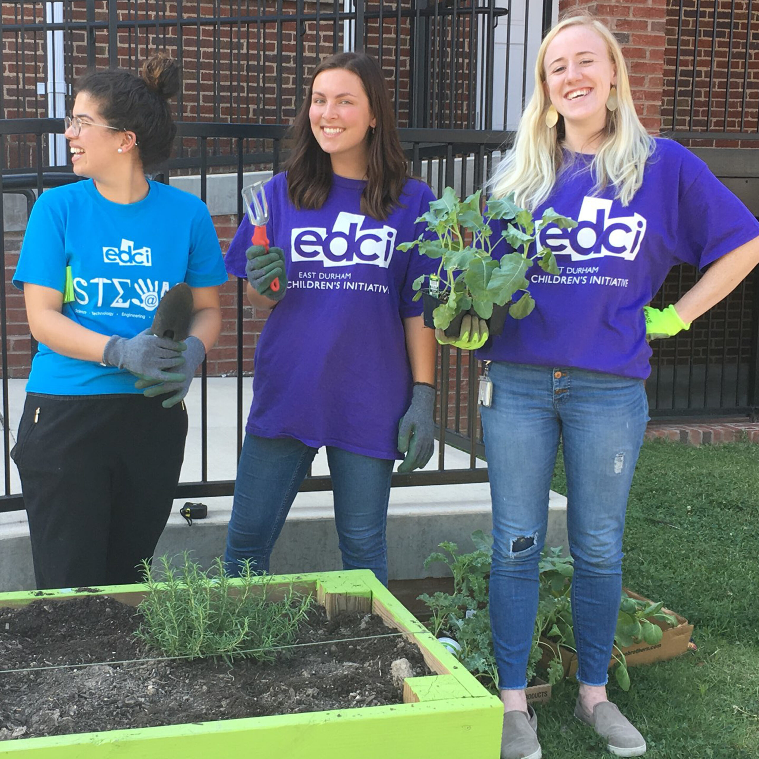 Community Garden Box & Build